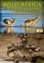 Дикие реки Африки — Wild Africa. Rivers of Life (2019)