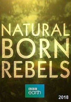 Прирожденные бунтари — Natural Born Rebels (2019)